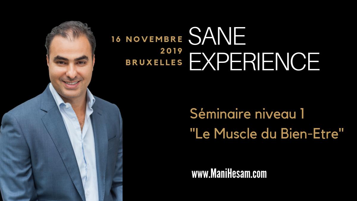 16 novembre 2019, Bruxelles - Séminaire SANE Expérience niveau 1