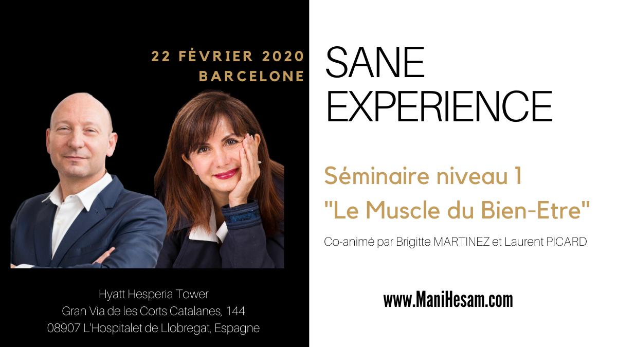 22 février 2020, Barcelone - Séminaire SANE Expérience niveau 1 animé par B. Martinez et L. Picard